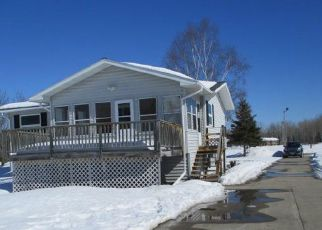 Foreclosed Home in International Falls 56649 6TH AVE E - Property ID: 4395071856