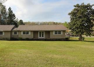 Foreclosed Home in Union Grove 35175 LYNNS DAM RD - Property ID: 4395197546