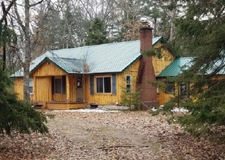 Foreclosed Home in Wellston 49689 CABERFAE HWY - Property ID: 4396035382