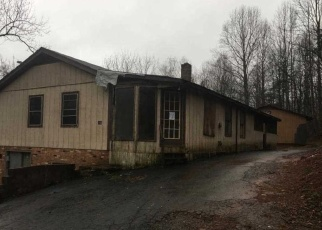Foreclosed Home in Stanardsville 22973 GOLDEN HORSESHOE RD - Property ID: 4396372181