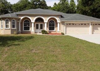 Foreclosed Home in Brooksville 34614 SADDLE WAY - Property ID: 4398493745