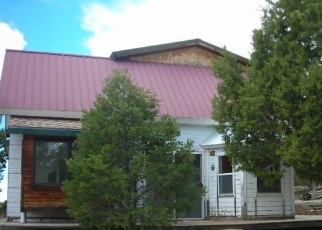 Foreclosed Home in Hesperus 81326 ALKALI GULCH RD - Property ID: 4398523517