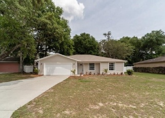 Foreclosed Home in Inverness 34450 SHELLY TER - Property ID: 4398526583