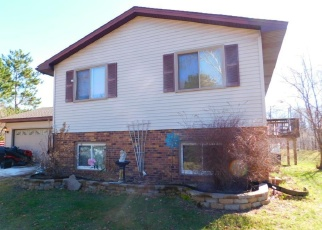 Foreclosed Home in Forest Lake 55025 BENDER ST NE - Property ID: 4399258883