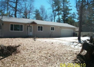 Foreclosed Home in Woodruff 54568 S FARMING RD - Property ID: 4399882102