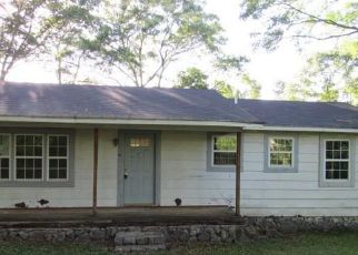 Foreclosed Home in La Fayette 30728 3RD AVE - Property ID: 4401438674