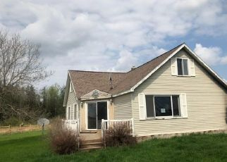 Foreclosed Home in Forbes 55738 WILLOW RD - Property ID: 4404086670