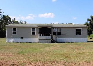 Foreclosed Home in Ludowici 31316 HILMAN DR SE - Property ID: 4404953859