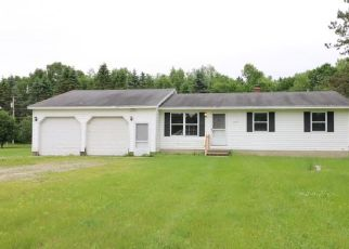 Foreclosed Home in Lapeer 48446 OREGON TRL - Property ID: 4405961186