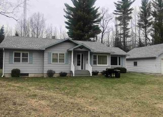 Foreclosed Home in Gladstone 49837 25TH RD - Property ID: 4405966447