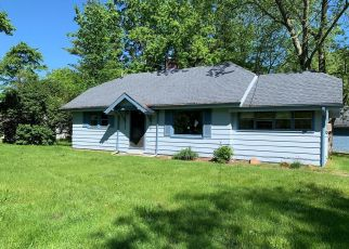 Foreclosed Home in Saint Clair 48079 GRATIOT AVE - Property ID: 4405985723