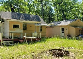 Foreclosed Home in Baldwin 49304 S REBECCA RD - Property ID: 4405988340