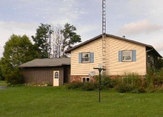 Foreclosed Home in Newberry 49868 COUNTY ROAD 402 - Property ID: 4405990986
