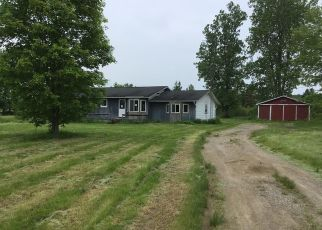 Foreclosed Home in Otter Lake 48464 N LAKE RD - Property ID: 4405991411
