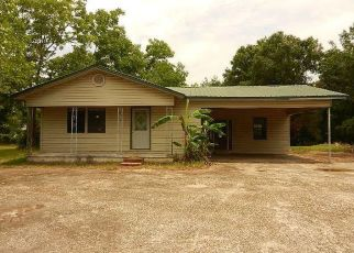 Foreclosed Home in Grand Bay 36541 SAEGER RD - Property ID: 4407612801