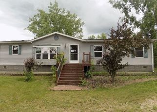 Foreclosed Home in Detroit Lakes 56501 BRANDY LAKE BLVD - Property ID: 4407651329