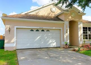 Foreclosed Home in Lutz 33559 OAKHAVEN CT - Property ID: 4407765648