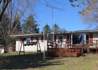 Foreclosed Home in Neshkoro 54960 BEAVER LN - Property ID: 4408093693