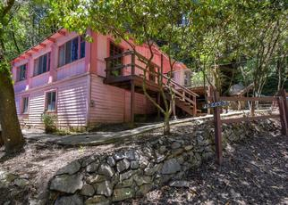 Foreclosed Home in Guerneville 95446 OLD RIVER RD - Property ID: 4408586854