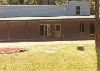 Foreclosed Home in Peterson 55962 STATE HWY 16 - Property ID: 4409454921