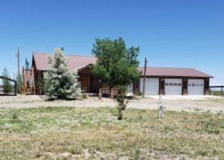 Foreclosed Home in Alamosa 81101 COUNTY ROAD 8 S - Property ID: 4409703231