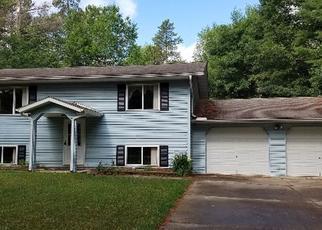 Foreclosed Home in Elcho 54428 PRATT RD - Property ID: 4410055371