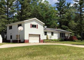 Foreclosed Home in South Branch 48761 CHAIN LAKE RD - Property ID: 4410317722