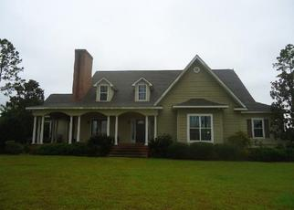 Foreclosed Home in Sumner 31789 MEADOWS RD - Property ID: 4410462247