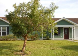 Foreclosed Home in Beaufort 29906 APPLEMINT LN - Property ID: 4410588833