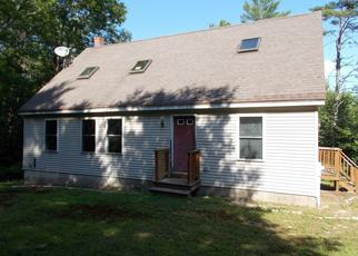 Foreclosed Home in Harrison 04040 COLONIAL CIR - Property ID: 4410804751