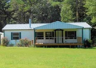 Foreclosed Home in Marshall 75670 WHITE FOX RD - Property ID: 4411265947