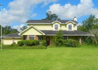 Foreclosed Home in Brazoria 77422 COUNTY ROAD 582B - Property ID: 4411268564
