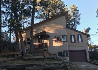 Foreclosed Home in Custer 57730 LINCOLN ST - Property ID: 4411317167