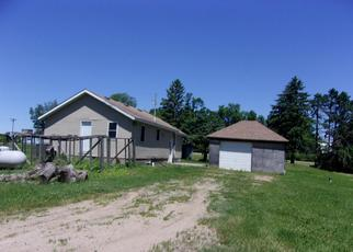 Foreclosed Home in Cosmos 56228 129TH ST - Property ID: 4411764342