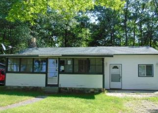 Foreclosed Home in Greenbush 48738 E CEDAR LAKE DR - Property ID: 4411798508