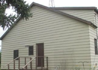 Foreclosed Home in Roseau 56751 427TH AVE - Property ID: 4412558839
