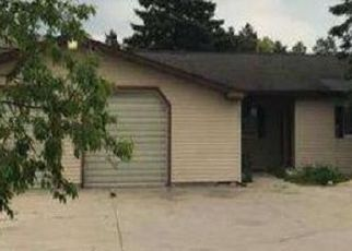 Foreclosed Home in Lewiston 49756 MARY ANN DR - Property ID: 4413559153