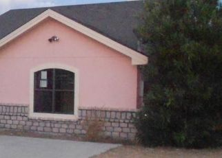Foreclosed Home in Eagle Pass 78852 CHRISTINA PKWY - Property ID: 4414331755