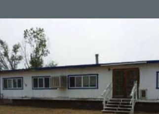 Foreclosed Home in Battle Mountain 89820 3300 E - Property ID: 4414527975