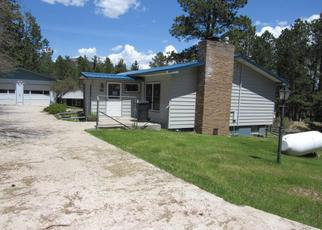 Foreclosed Home in Custer 57730 LEISENGER LN - Property ID: 4415273840