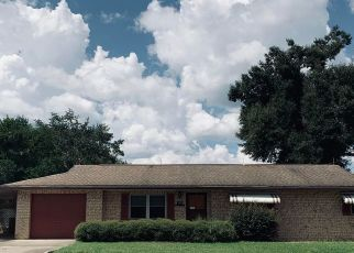 Foreclosed Home in Belleview 34420 SE 119TH PL - Property ID: 4415477943