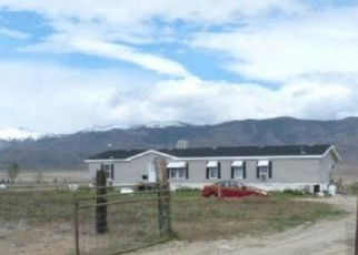 Foreclosed Home in Winnemucca 89445 HARRY DR - Property ID: 4416307904