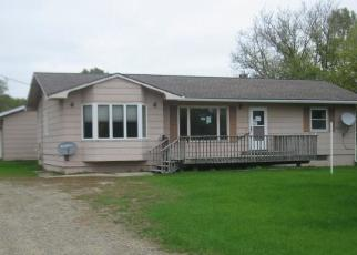 Foreclosed Home in Long Prairie 56347 COUNTY 38 - Property ID: 4419275601