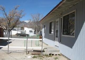 Foreclosed Home in Hawthorne 89415 D ST - Property ID: 4419325531