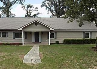 Foreclosed Home in Gordon 36343 S COUNTY ROAD 95 - Property ID: 4419457355