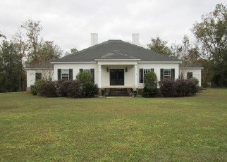 Foreclosed Home in Leesburg 31763 BRIGHT WATER DR - Property ID: 4420320162