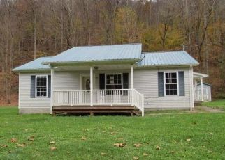 Foreclosed Home in Vanceburg 41179 FULLER BR - Property ID: 4421602106