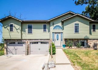 Foreclosed Home in Plato 65552 TAYLOR LN - Property ID: 4421715556