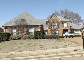 Foreclosed Home in Cordova 38016 RIVER PINE DR - Property ID: 4422480250
