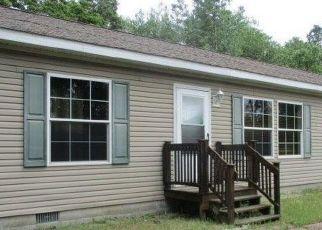 Foreclosed Home in Winamac 46996 W 550 N - Property ID: 4423978568